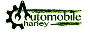 charley auto no n site 737